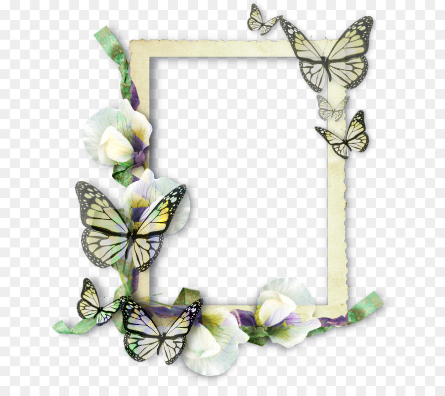 Butterfly Picture Frames Molding Insect - butterfly frame png ...