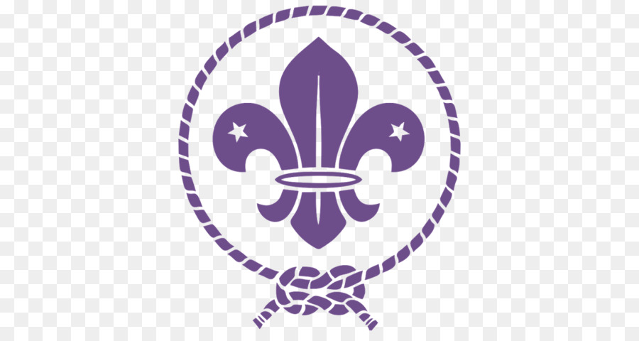 Scouting For Boys World Scout Emblem Boy Scouts Of America
