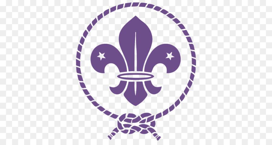 Scouting For Boys World Scout Emblem Boy Scouts Of America Fleur De
