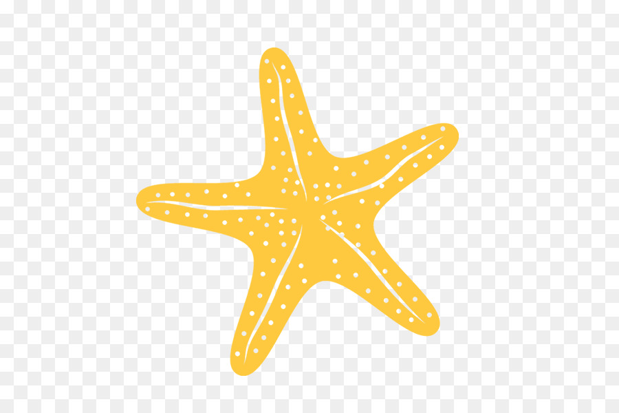 Starfish yellow. Background png download free