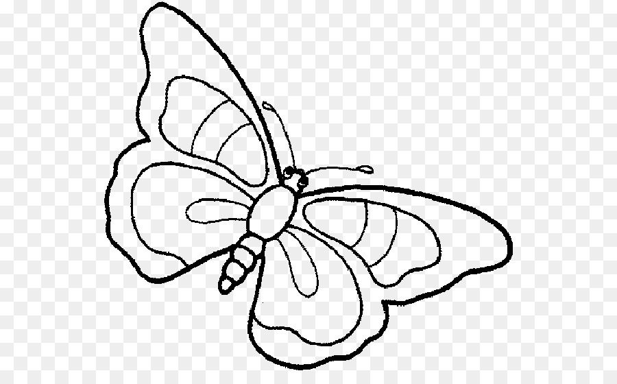 Butterfly Coloring book Child Drawing Kleurplaat - charlize theron ...