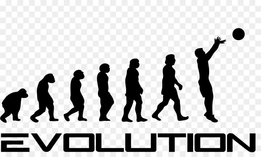 ee933e60cd T-shirt Human evolution Garrus Vakarian Homo sapiens - daniel bryan ...