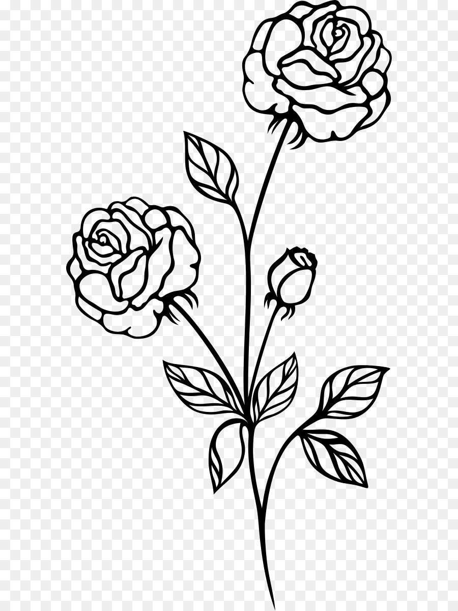 Rose black and white black rose art symmetry png