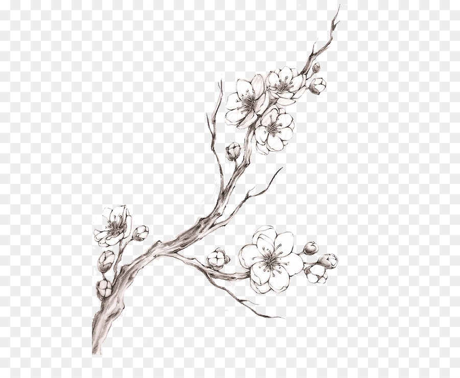 fb419d831 Cherry blossom Tattoo Drawing - cherry blossom watercolor png ...