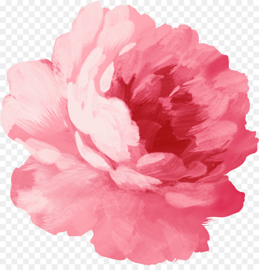 Sticker flower pink flowers pink plant png