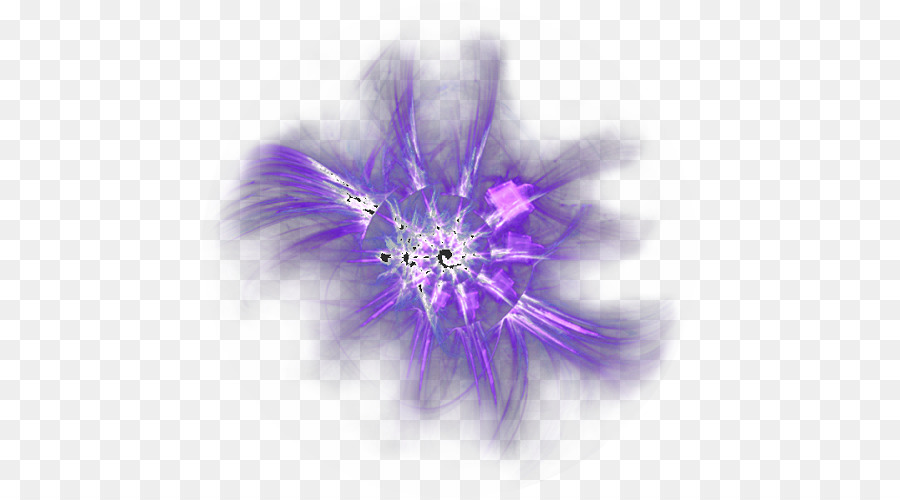 Perfect Purple Color   Point Of Light