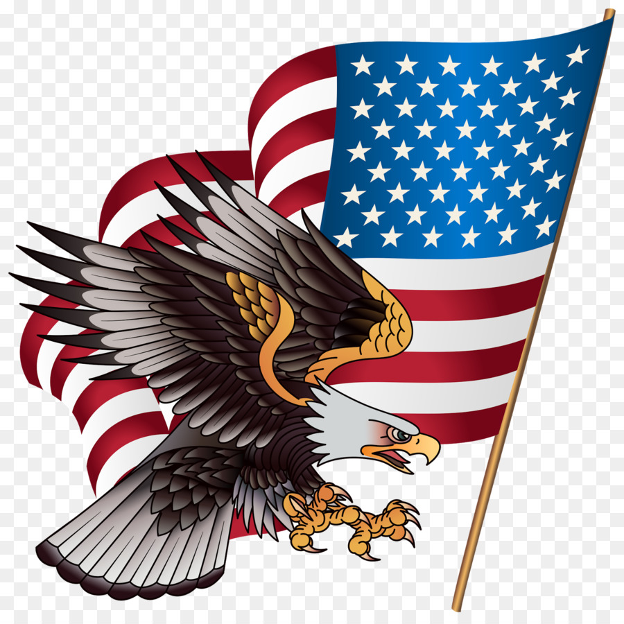 United States T Shirt American Eagle Outfitters Clip Art American