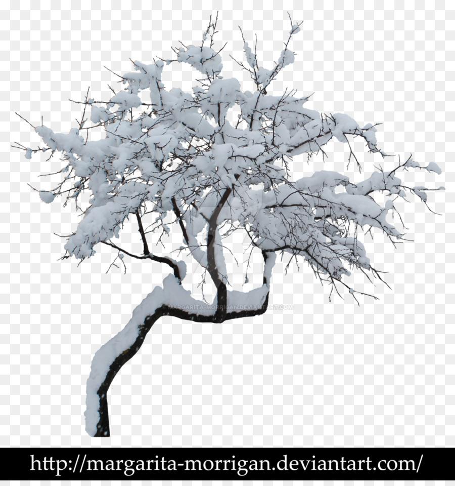 Baum Winter Zweig Clipart Schnee Baum Png Herunterladen 1024