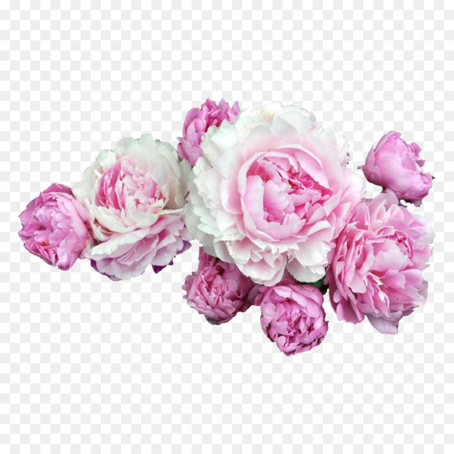 Pink Flowers Desktop Wallpaper Clip Art Peony Png Download 2048