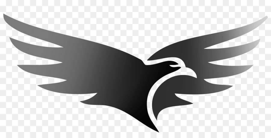 Hawk Concrete Floor Coatings Logo Building Materials