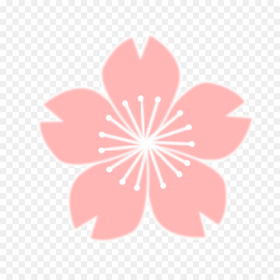 This is a graphic of Crafty Sakura Flower Drawing