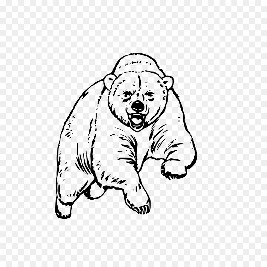 El oso negro americano oso Polar oso pardo de California - oso png ...