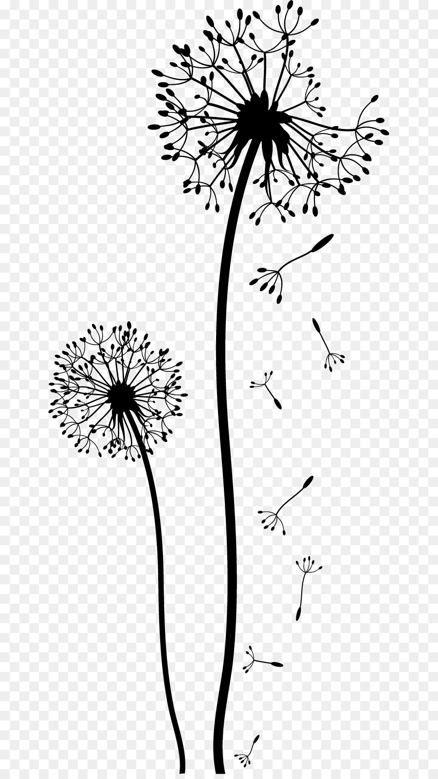 Dandelion Drawing Black And White Clip Art Flower Wall Png