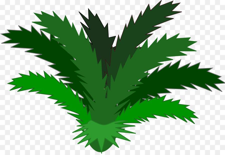 Jungle Plant Tropical rainforest Clip art - plants png ...