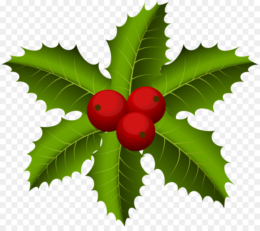 Christmas Holly Png.Christmas Holly Png Download 8000 7027 Free Transparent