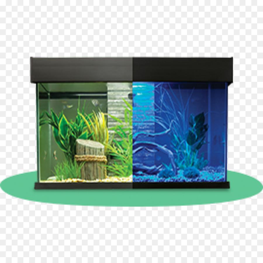 Aquariums Siamese Fighting Fish Aquarium Furniture Filtration   Fish Tank