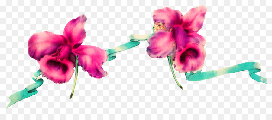 Paper flower ribbon ribbon border png download 1600686 free paper flower ribbon ribbon border mightylinksfo