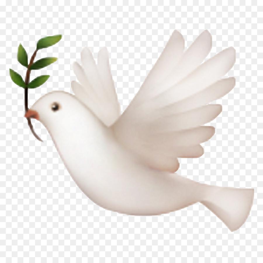 Iphone Emojipedia Doves As Symbols Pigeon Png Download 20502050