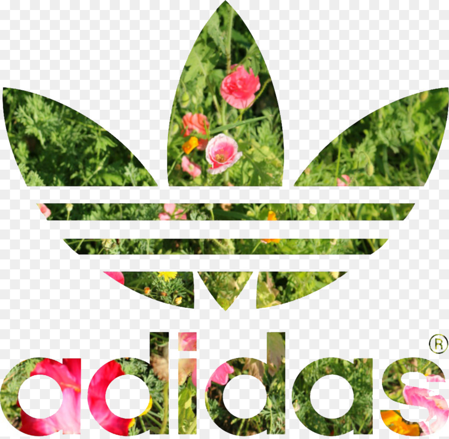 T-shirt Adidas Stan Smith Hoodie Adidas Originals - flower logo png download - 2106*2048 - Free Transparent Tshirt png Download.