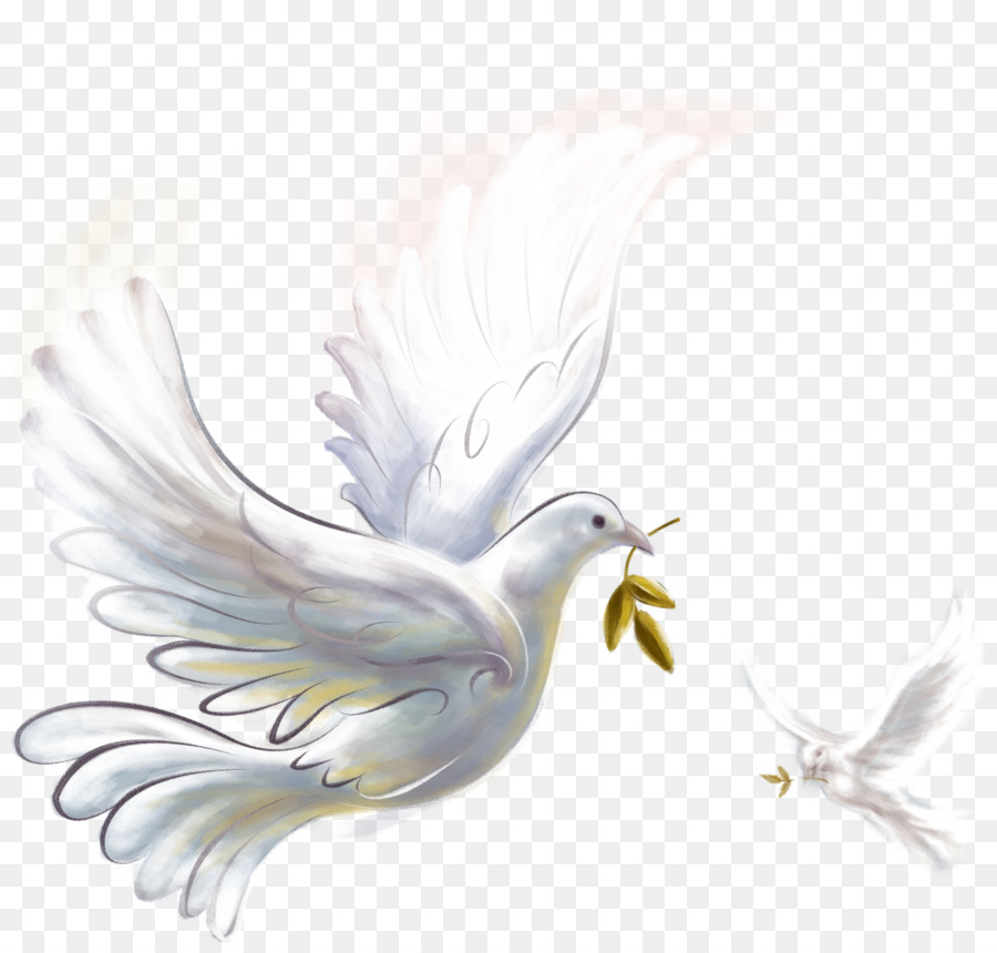 Epicenter Of Peace Doves As Symbols Clip Art Pigeon Png Download