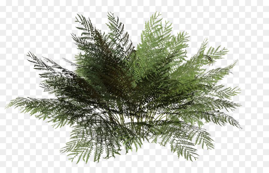 tree rendering plant shrub bushes png download 1379 Tree Stump Clip Art Free Tree Stump Clip Art Free
