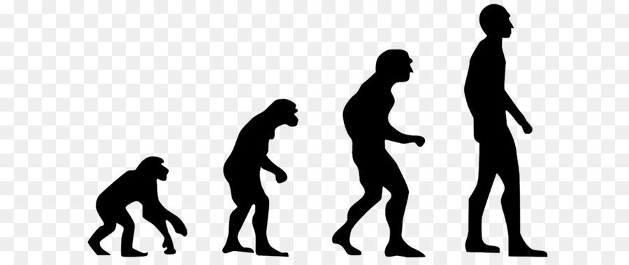 El Homo sapiens Evolución 2.0: Romper el punto muerto Entre Darwin y ...