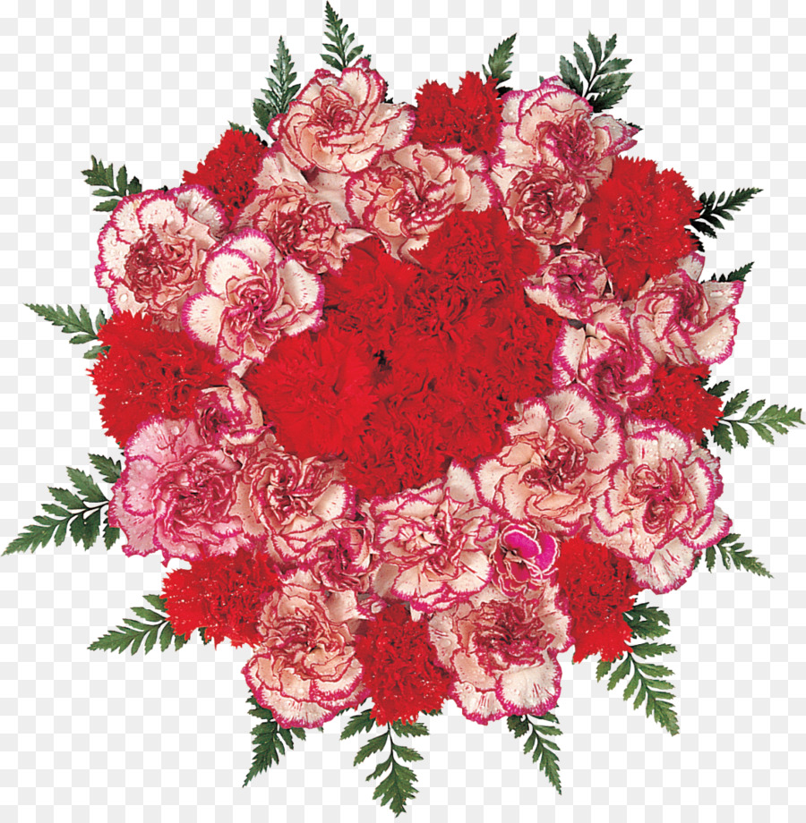 Carnation Flower bouquet Garden roses - CARNATION png download ...