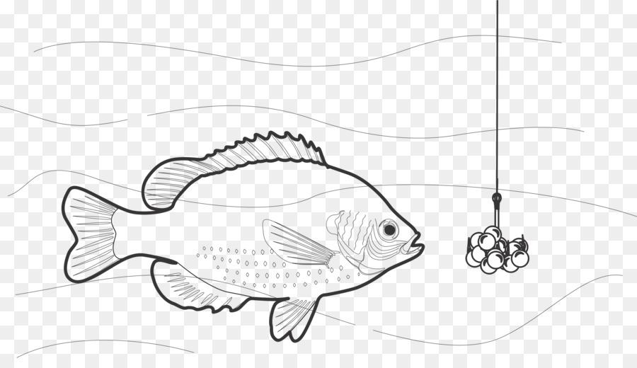 La pesca de Peces de cebo gancho en blanco y Negro imágenes ...