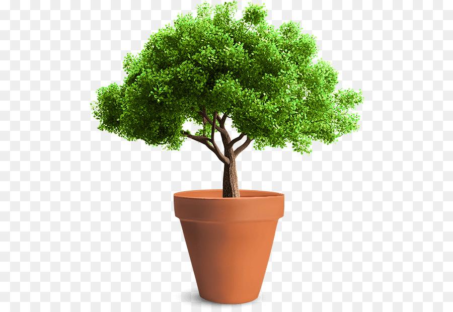 La plantación de árboles Poda de Croquis - maceta de flores Formatos ...