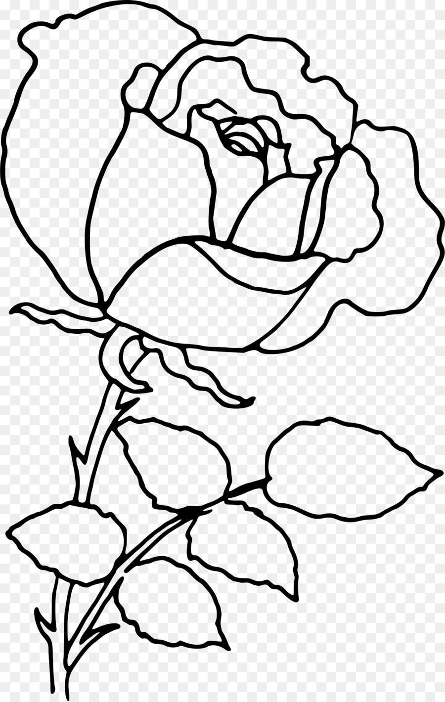 Rose Flower Drawing Clip Art Line Drawing Png Download 1523 2400
