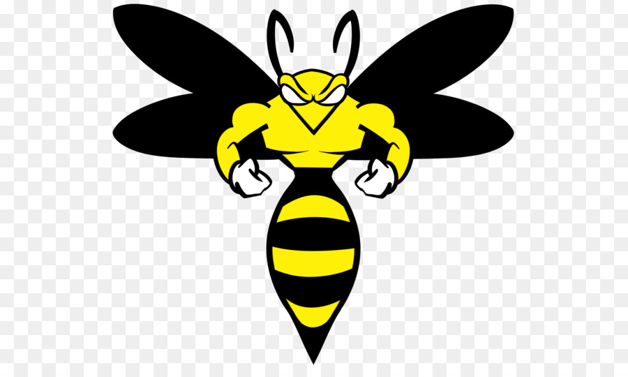 Wasp Honey Bee Png Download 600 535 Free Transparent Wasp Png