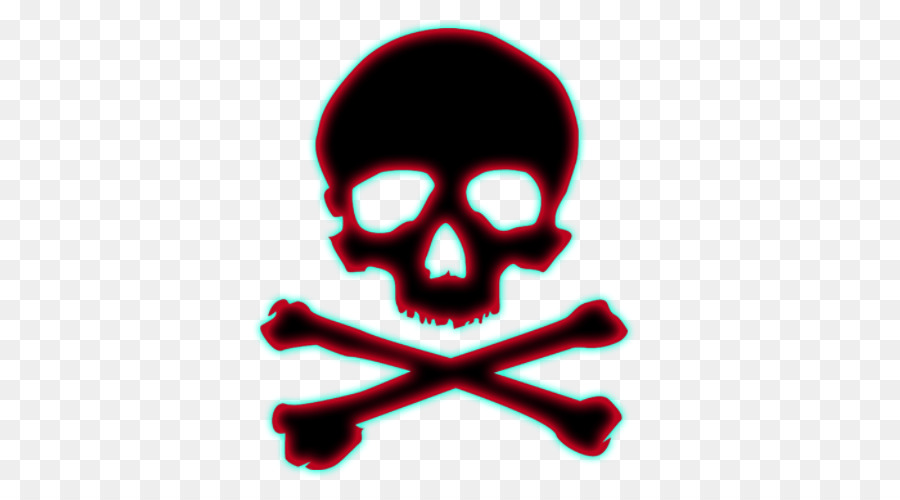Calavera Human Skull Definition Dictionary Gossip Png Download