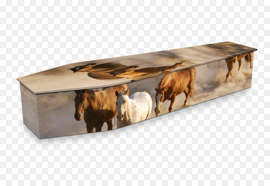 Expression Coffins Natural Burial Swanborough Funerals Michael - Coffin coffee table