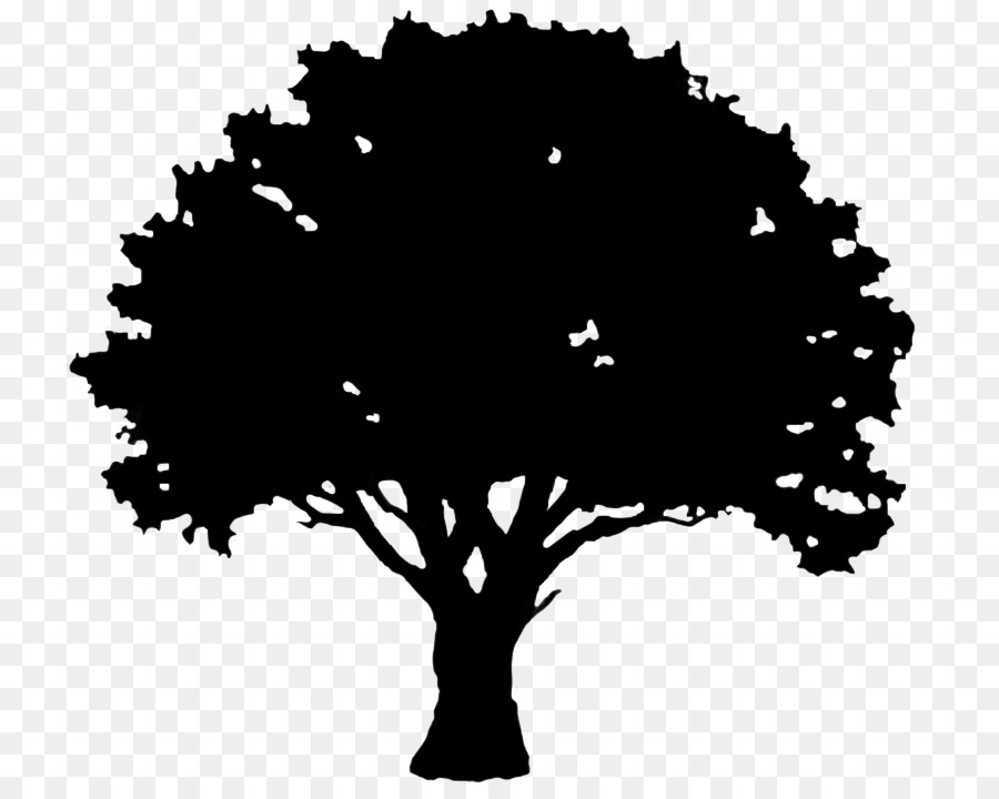 english oak tree silhouette clip art hole png download 827 709 rh kisspng com Tree Branch Silhouette Clip Art Pine Tree Silhouette Clip Art