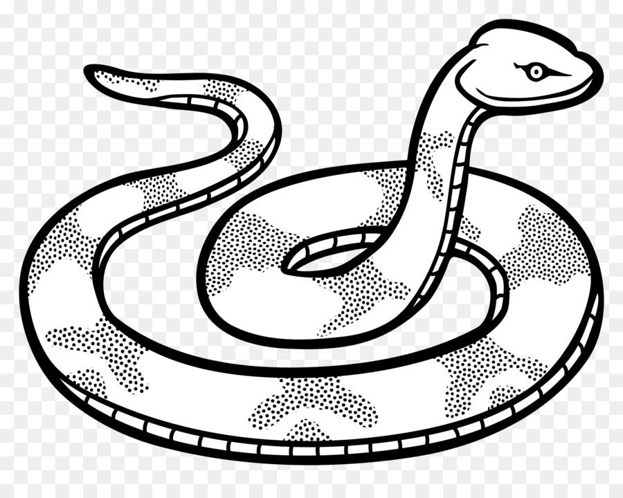 Snake Black And White Drawing Black Mamba Clip Art