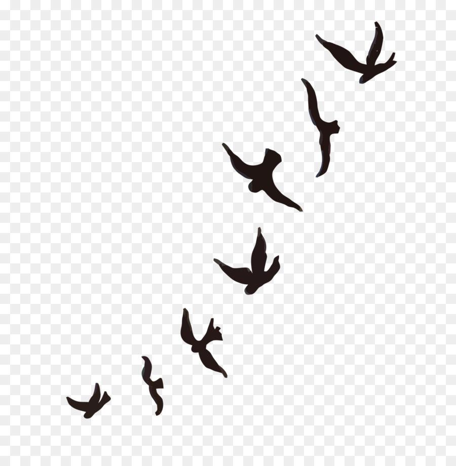 Mountain bluebird Tattoo Sparrow Cygnini - flock of birds png ...