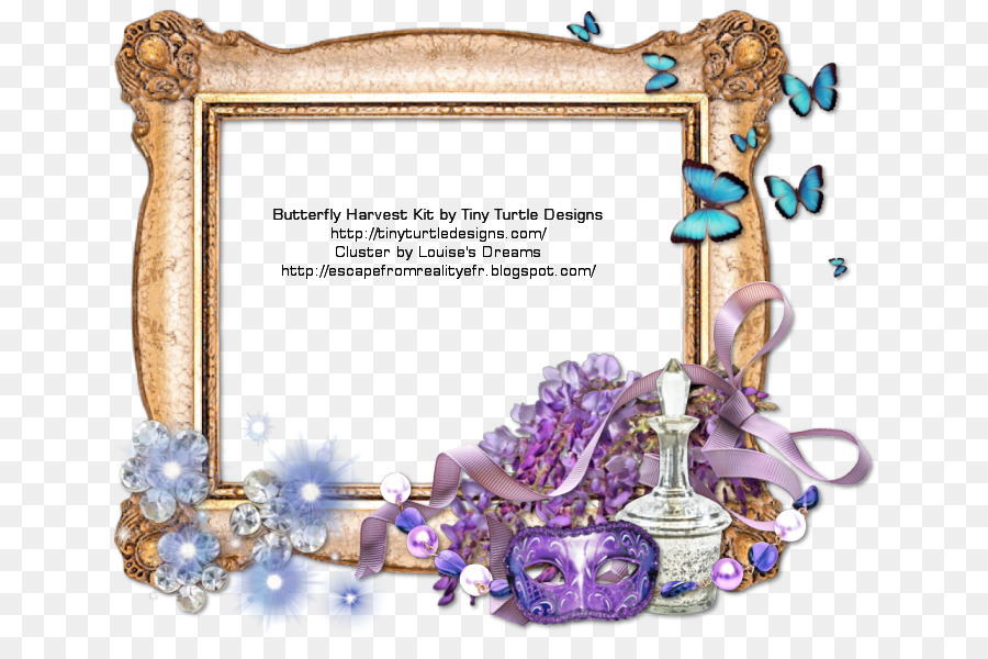 Picture Frames Blog Reality Dream - butterfly frame png download ...