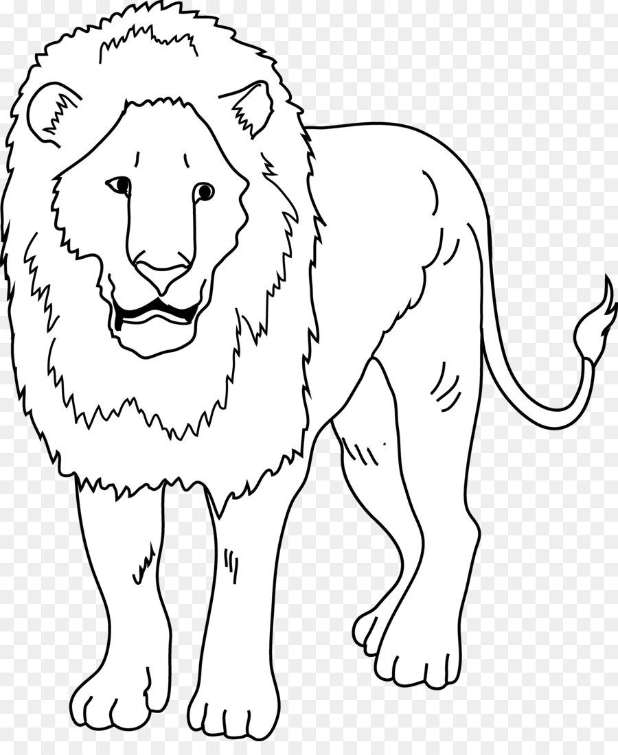 white lion black and white clip art lion drawing png download
