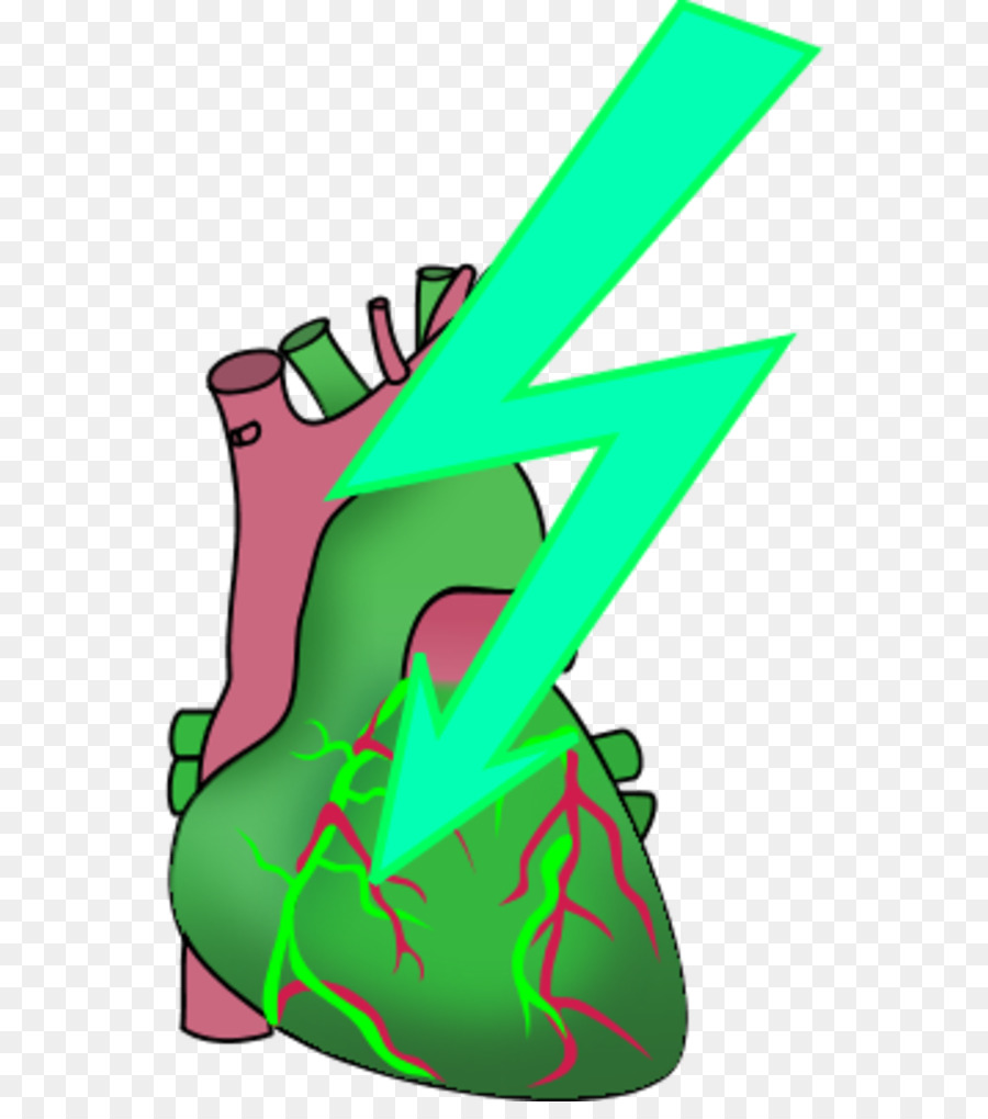 Heart Anatomy Human Body Clip Art Heart Attack Png Download 600