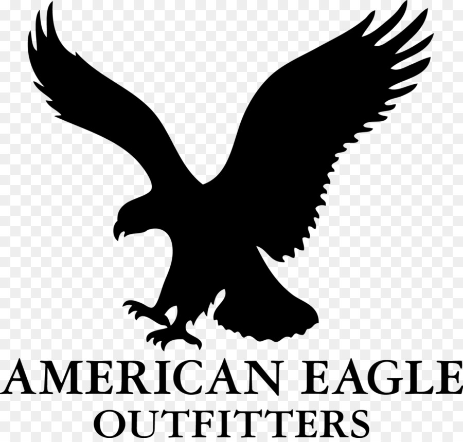 American Eagle Outfitters Einzelhandel Aerie Logo Jeans American