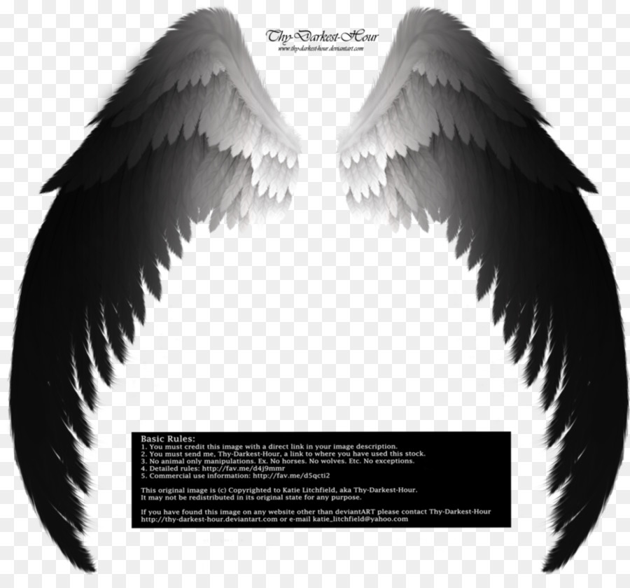 Archangel drawing fallen angel angel wings png download 936854 archangel drawing fallen angel angel wings altavistaventures Images
