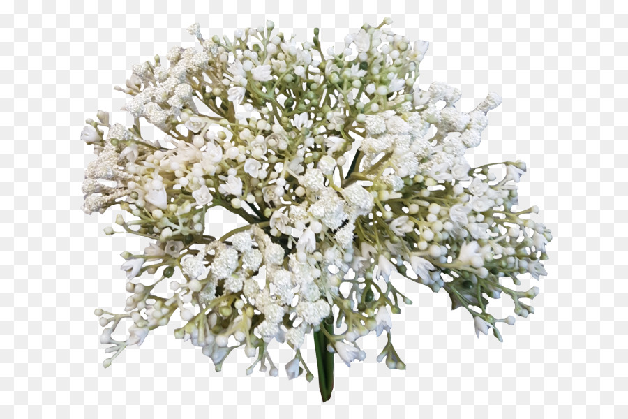 Flower bouquet Baby\'s-breath Cut flowers - baby breath png download ...