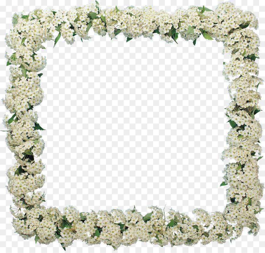 Picture Frames Flower GIMP Garden roses - frangipani png download ...