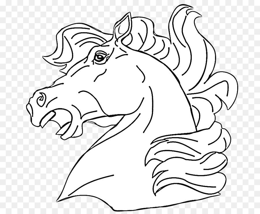Puledro American Quarter Horse Libro Da Colorare Pony Mare Testa