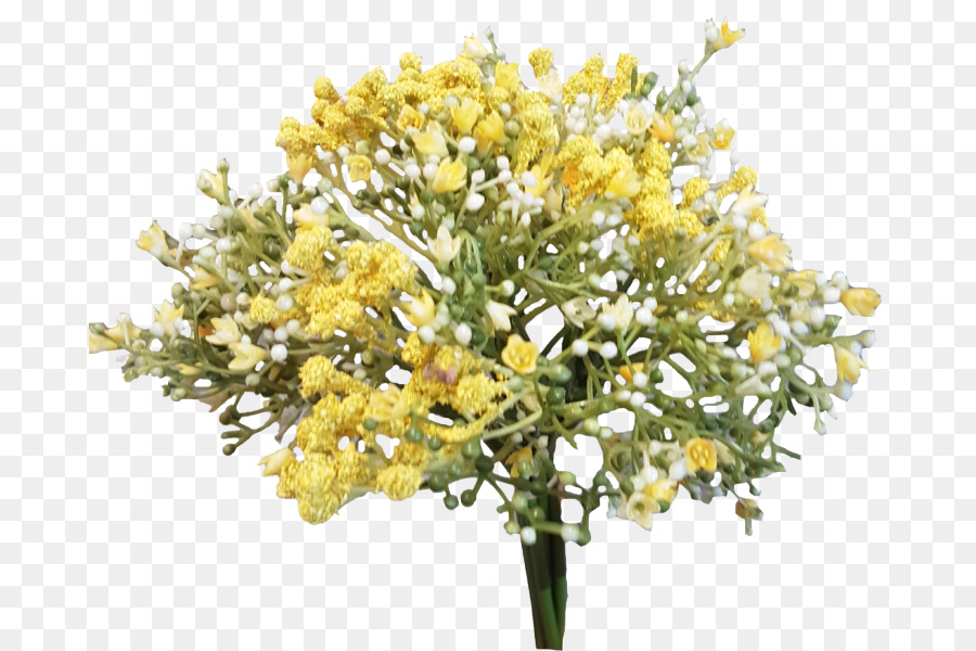 Cut flowers Branch Twig Plant - baby breath png download - 800*600 ...
