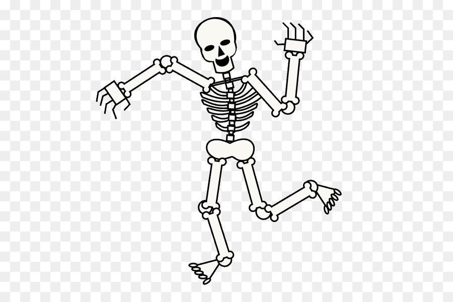 Esqueleto humano de Dibujo de dibujos animados de Cráneo - Esqueleto ...