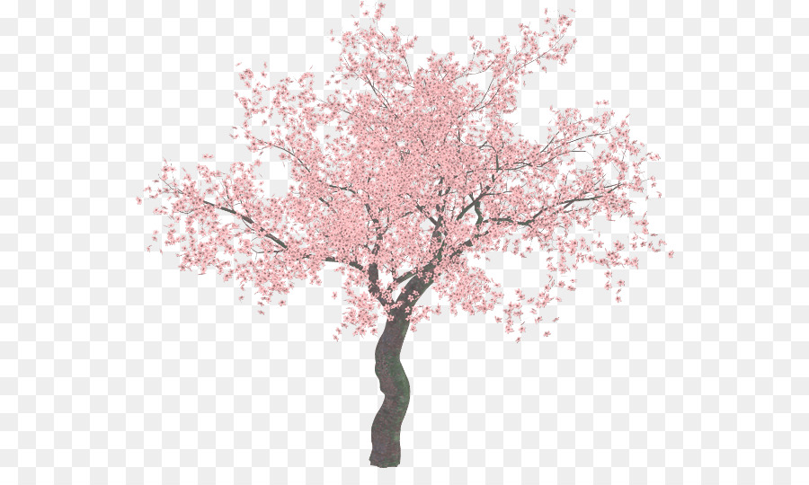 cherry blossom tree clip art sakura tree png download clip art banner flag clip art banner happy holidays