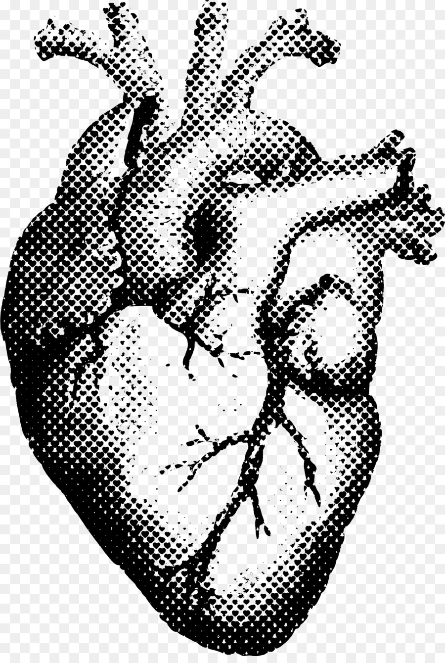 Heart Human anatomy T-shirt Printing - human heart png download ...