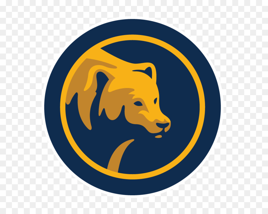 University Of California Berkeley California Golden Bears Football