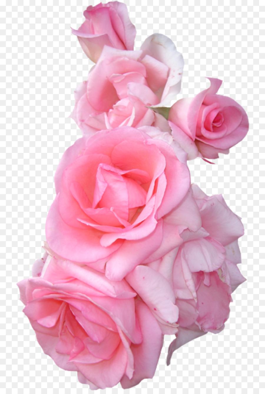 Garden Roses Flower Bouquet Pink Flower Border Png Download 800